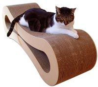 Lounge for a cat