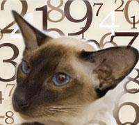 для гороскопу по выбрать клички кота рак