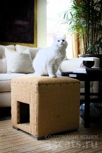 Домик для кошки - когтеточка