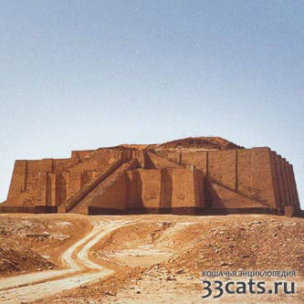 Месопотамия в междуречье в Тигра и Евфрата