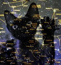 Астрология для кошек, гороскопы для кошек, кошачий зодиак